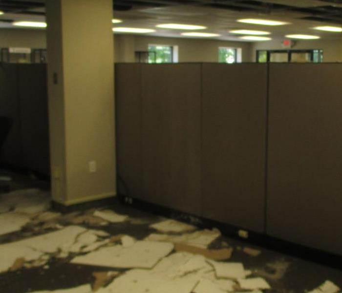 Canton business with ceiling tiles fallen from above and scattered about the flooring and work cubicles
