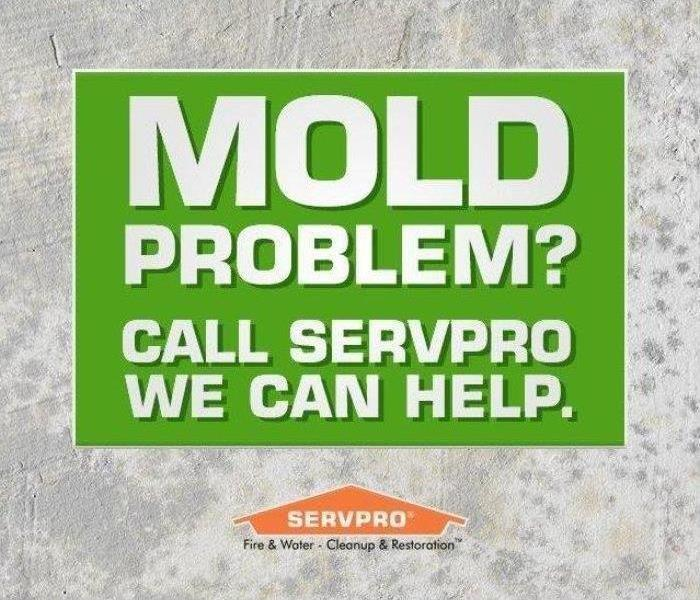 Mold Remediation Overlooking Water Leaks in Your Home- A Mold Threat
