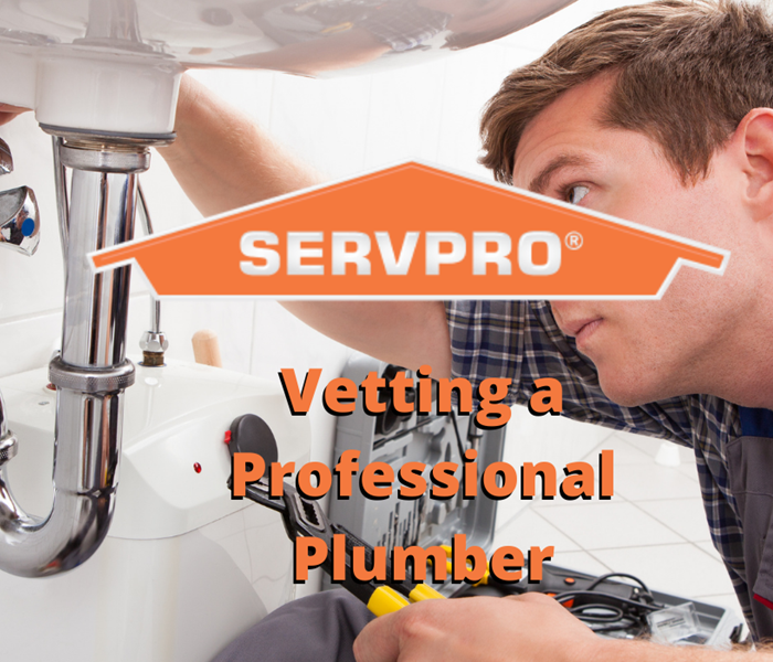 Vetting a professional Plumber