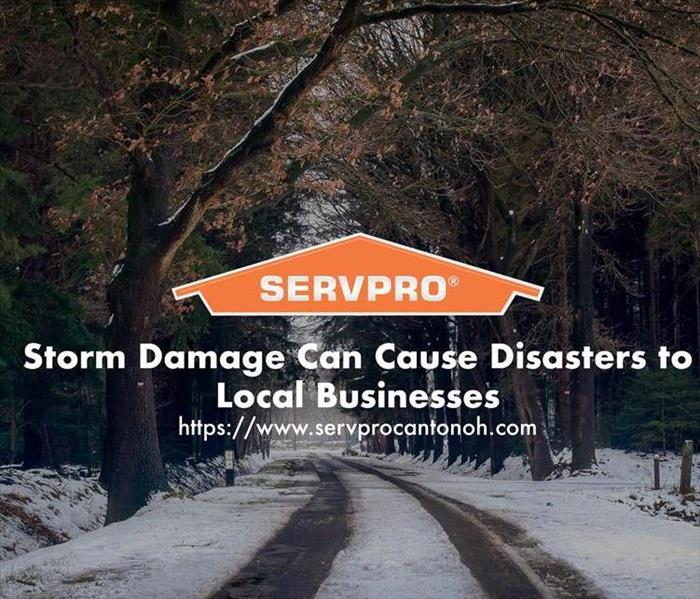 Orange SERVPRO  house logo on image with trees and snow.
