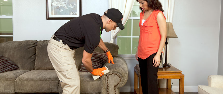 North Canton, OH carpet upholstery cleaning